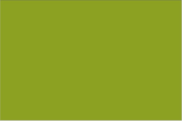 Fond-vert-olive